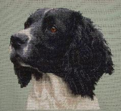 Stitches used: Whole Cross Stitch.